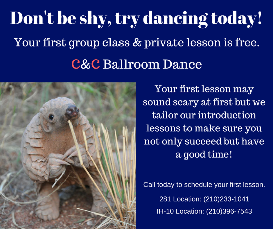Try your free introductory lesson today!